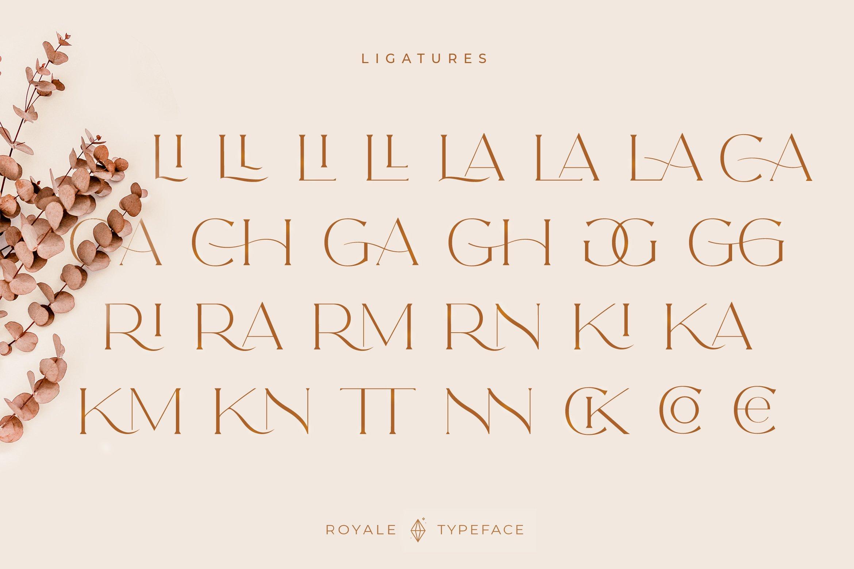 Royale Luxurious Typeface example image 6