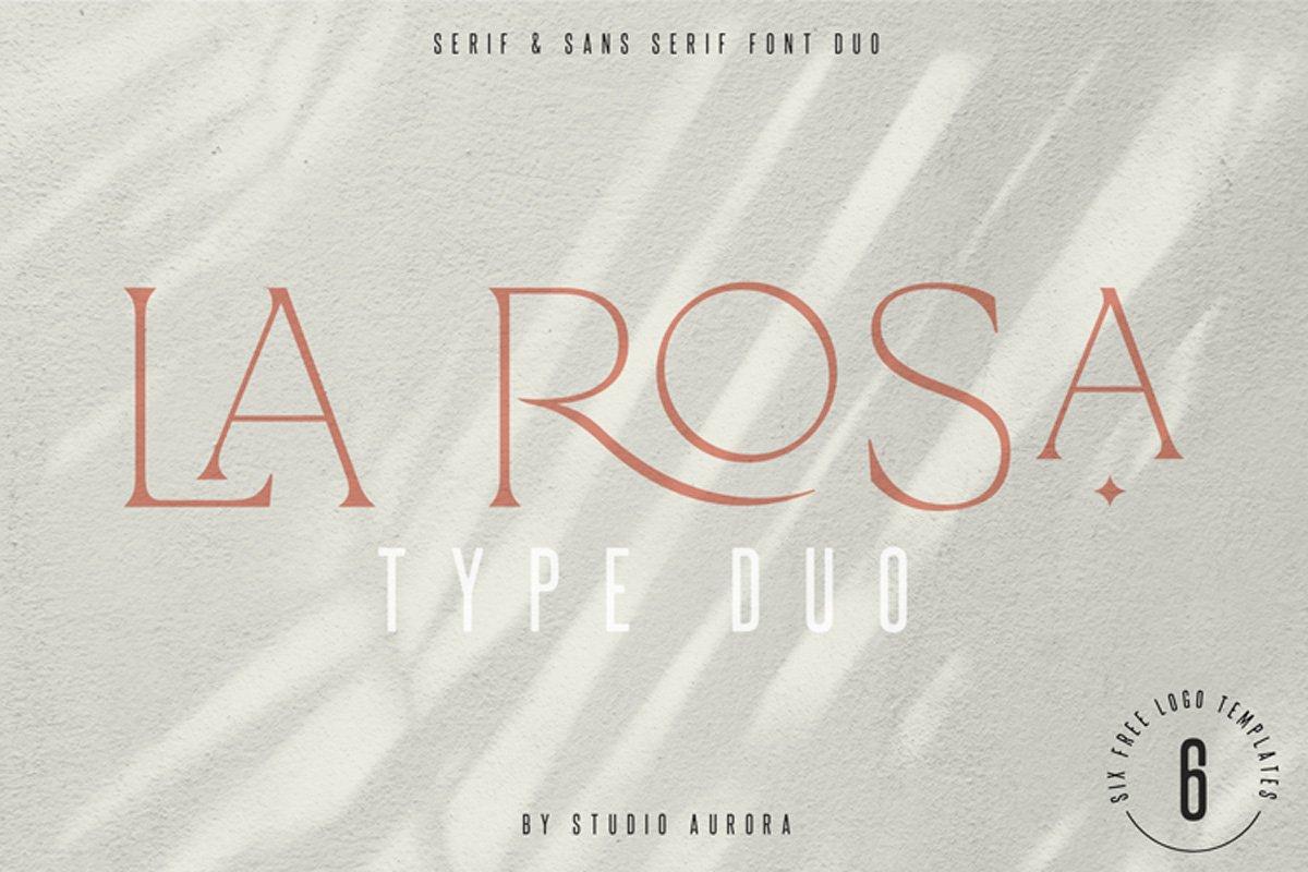 La Rosa Elegant Unique Serif Font example image 1