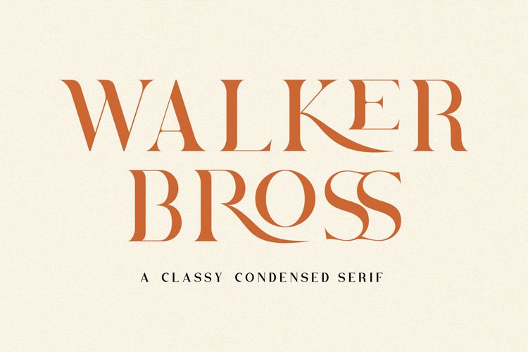 Brovile. A Classy Serif example image 3