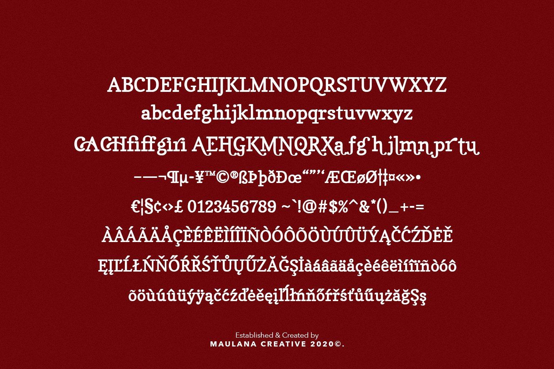 Morish Display Serif Handmade Font Ligature Type example image 3