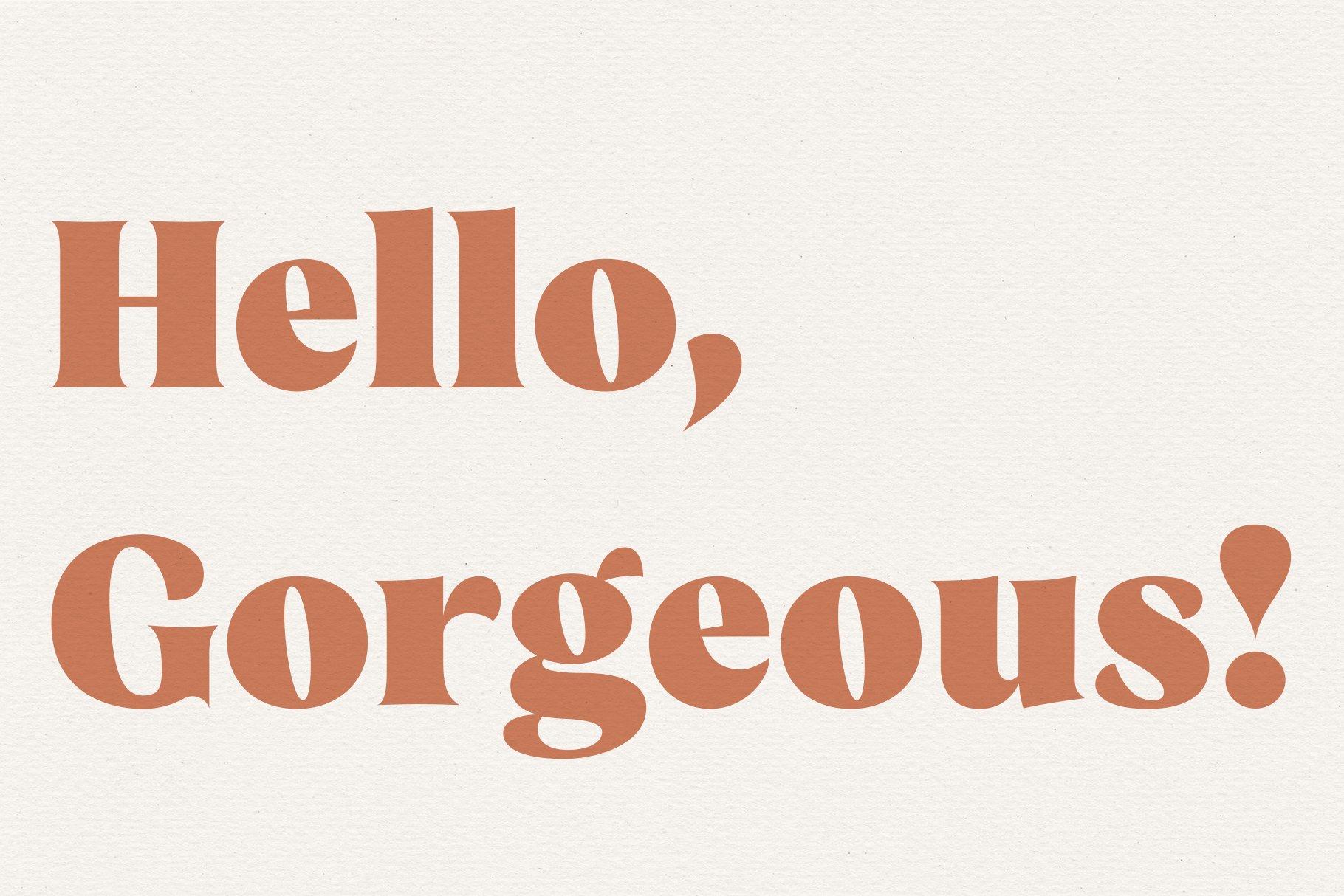Taurus // A Stylish & Modern Serif example image 10