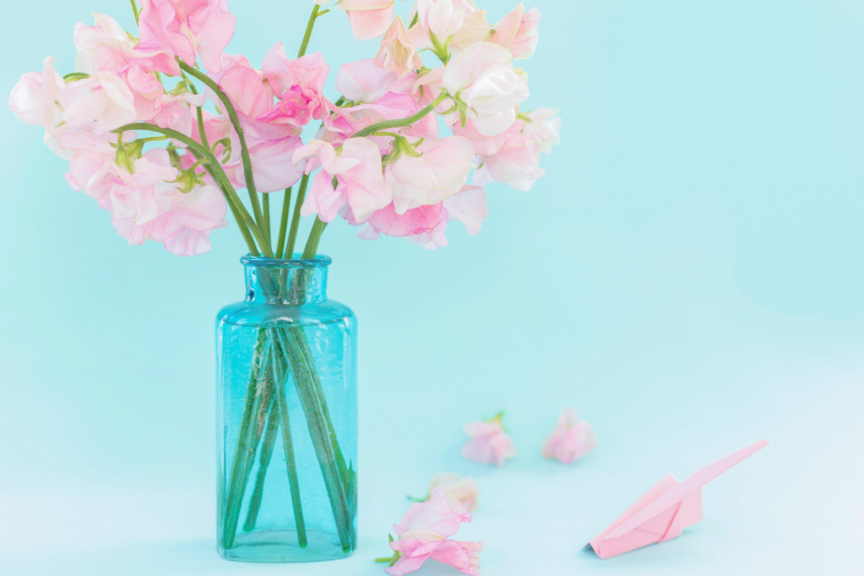 Pink sweet peas Lathyrus flowers in blue vase.Paper airplane example image 1
