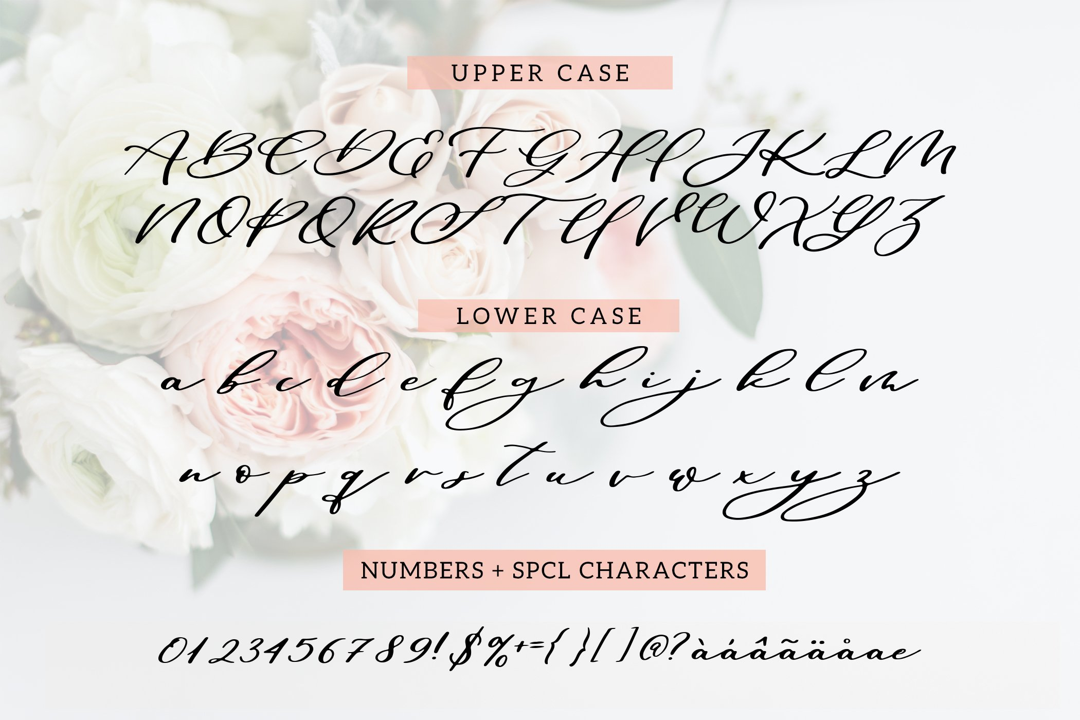 Maid Of Honor - A script font with matching doodles example image 2