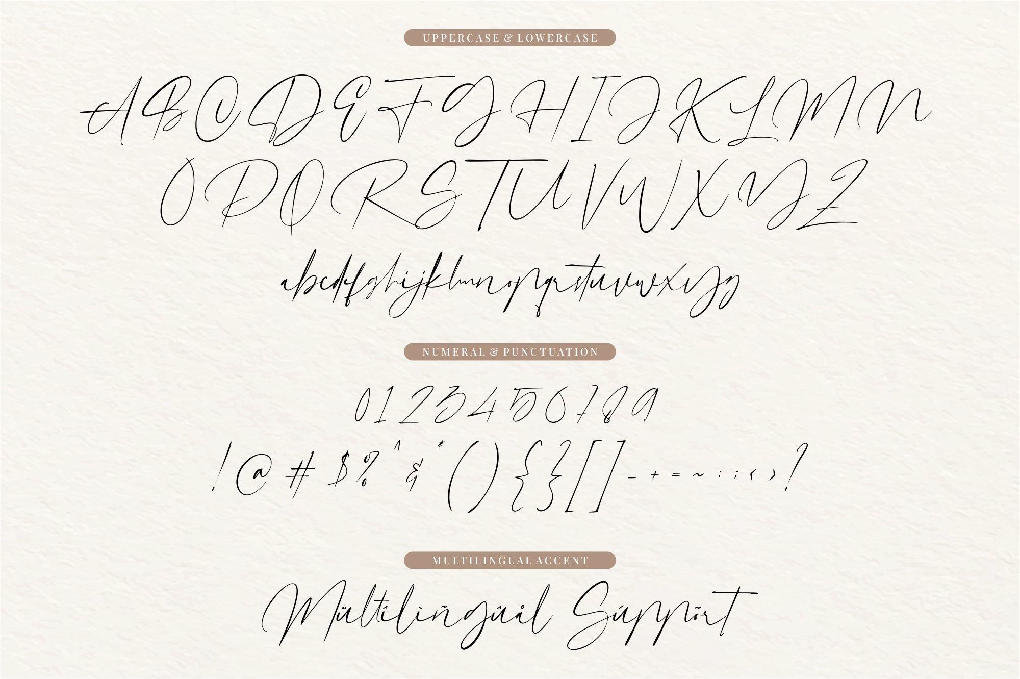 Dutchly - Modern Handwritten example image 5