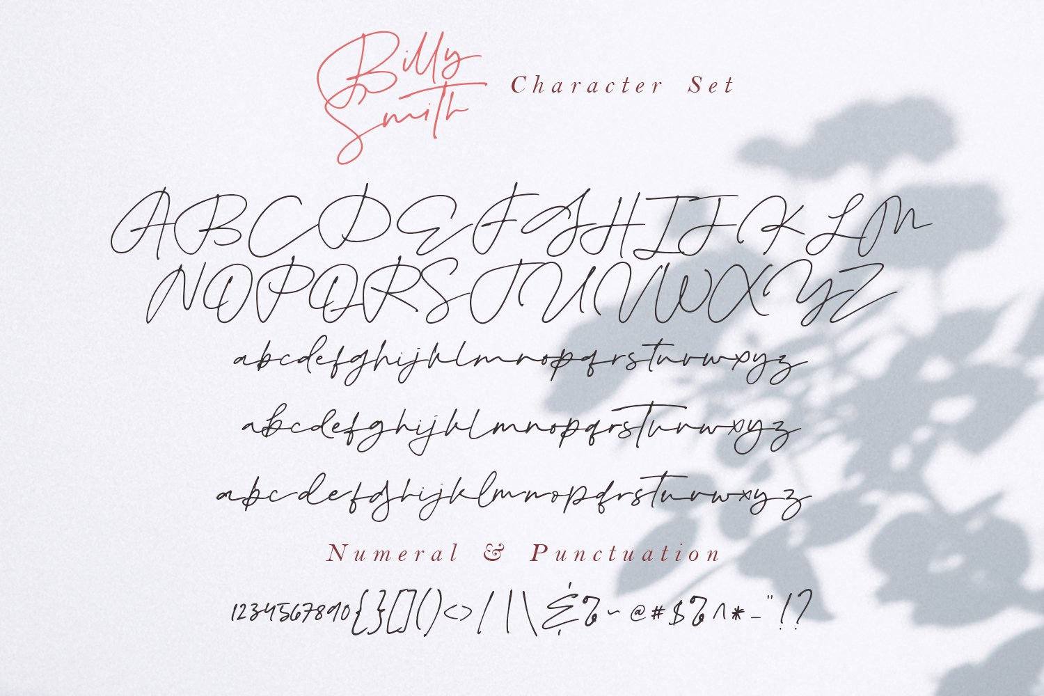 Billy Smith - Signature Font example image 13
