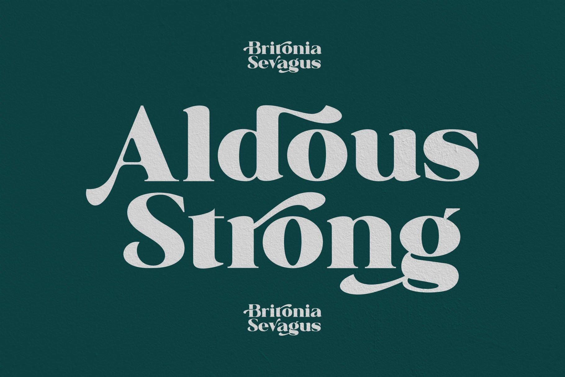 Britonia Sevagus example image 3