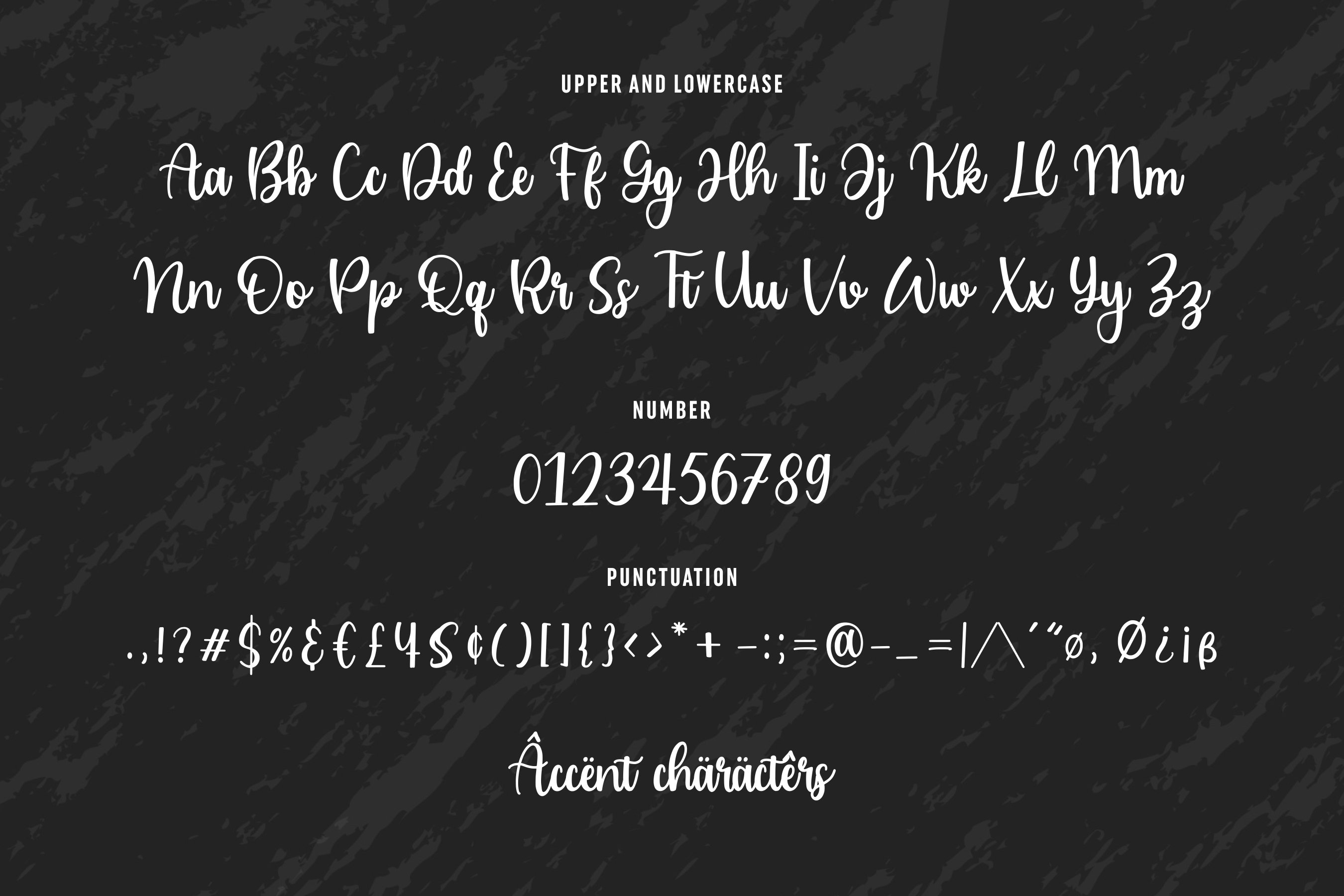 Cailyn Bloom Modern Script Font example image 6