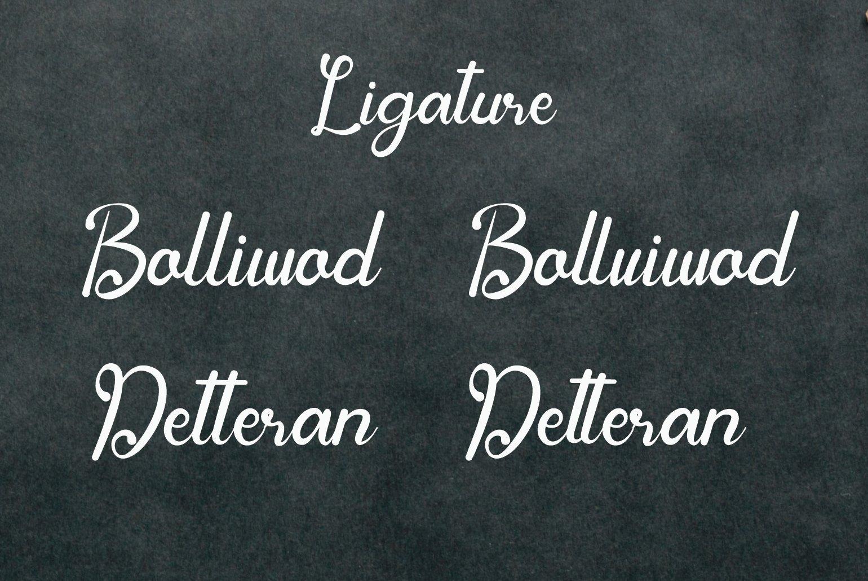 Bulgatin example image 4