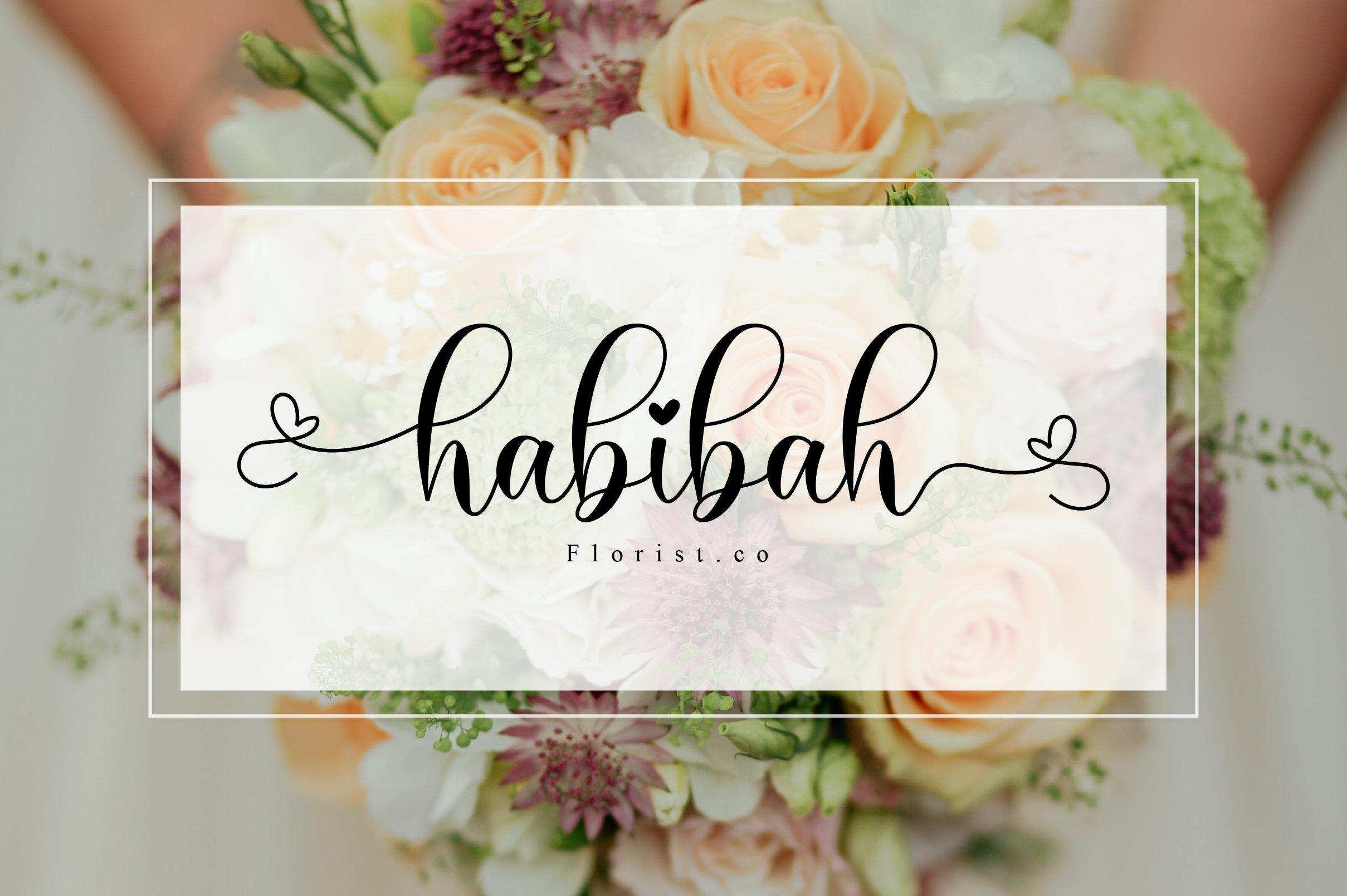 Haiskey - Lovely Script Font example image 7