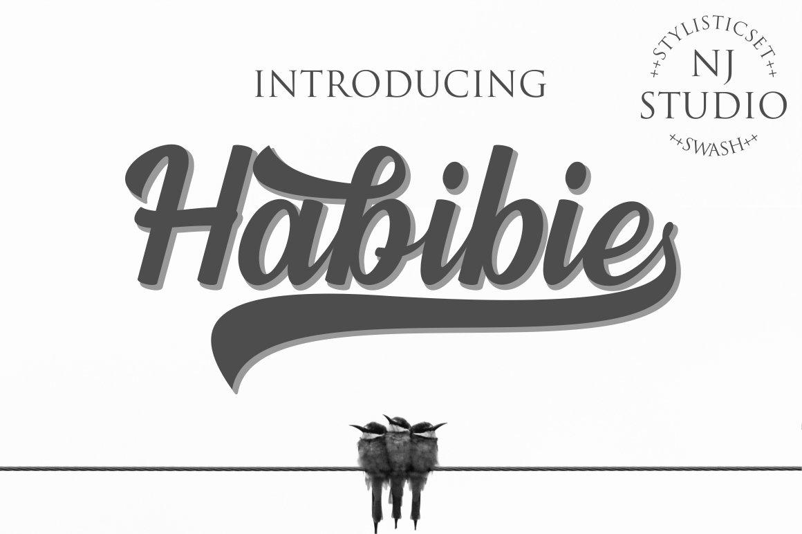 Habibie example image 1