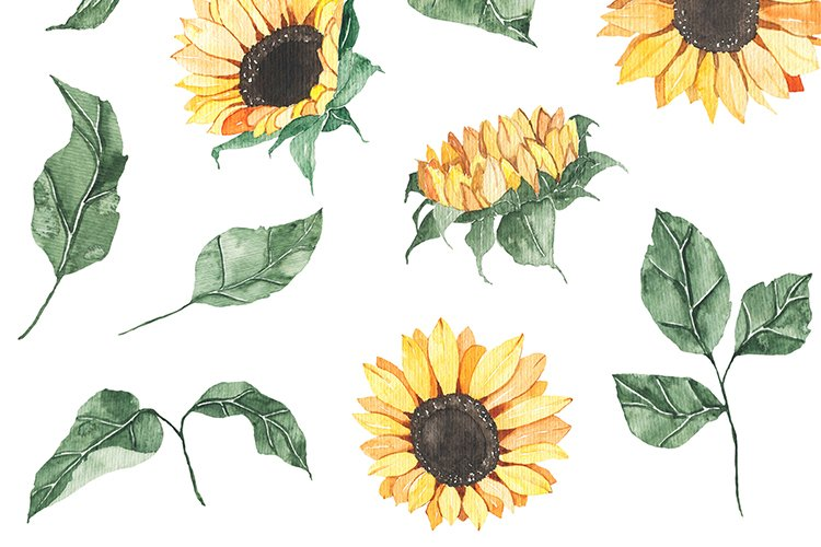Watercolor Sunflowers collection example image 11