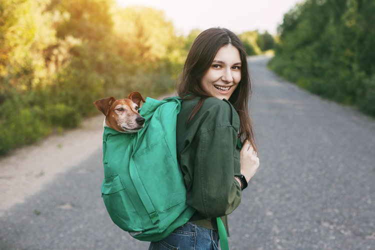 Girl holds with a backpack from which a cute dog peeks. example image 1