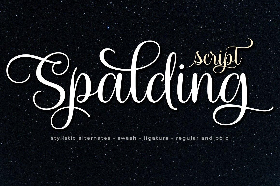 Spalding Script example image 1