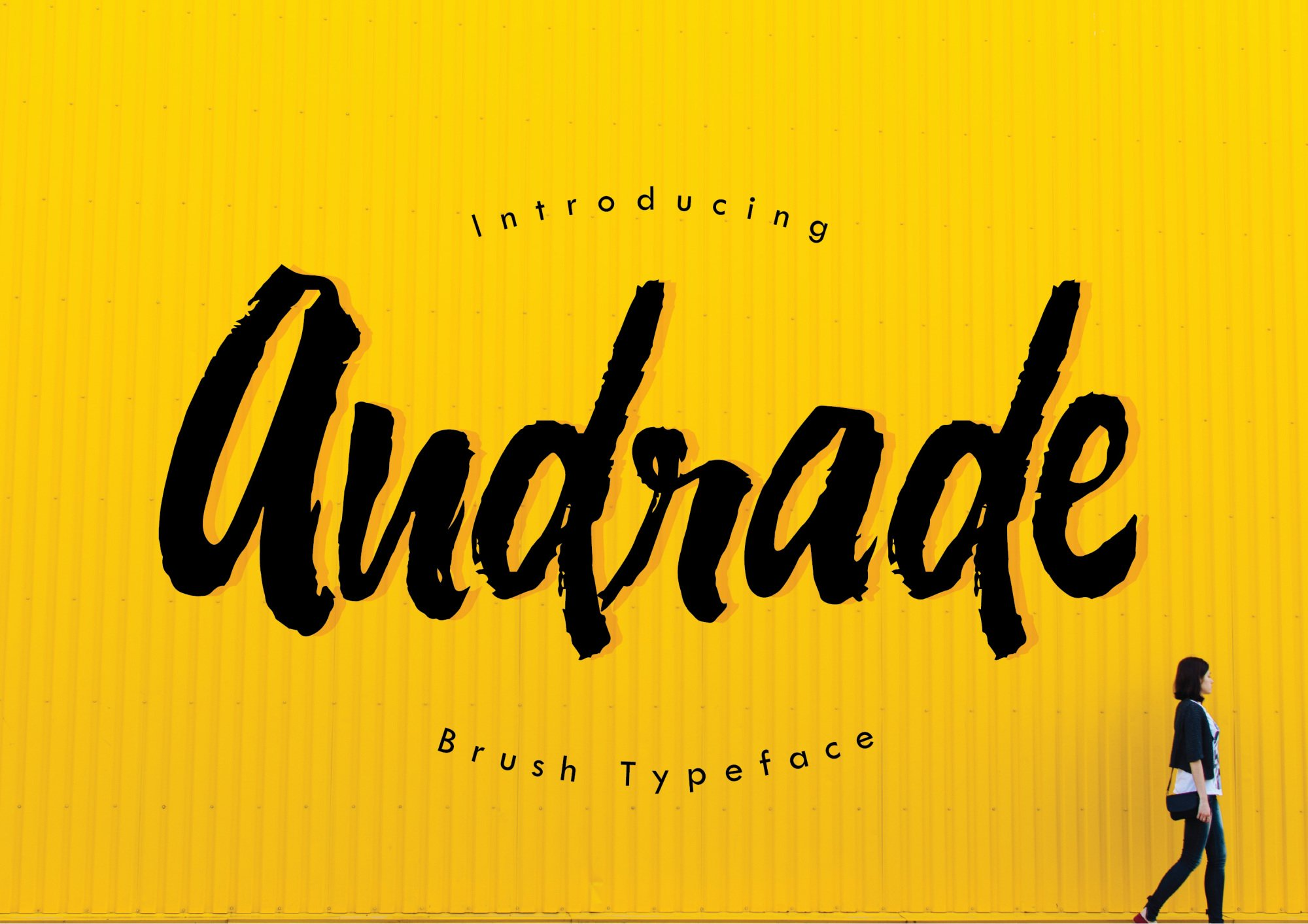 Andrade Typeface example image 1