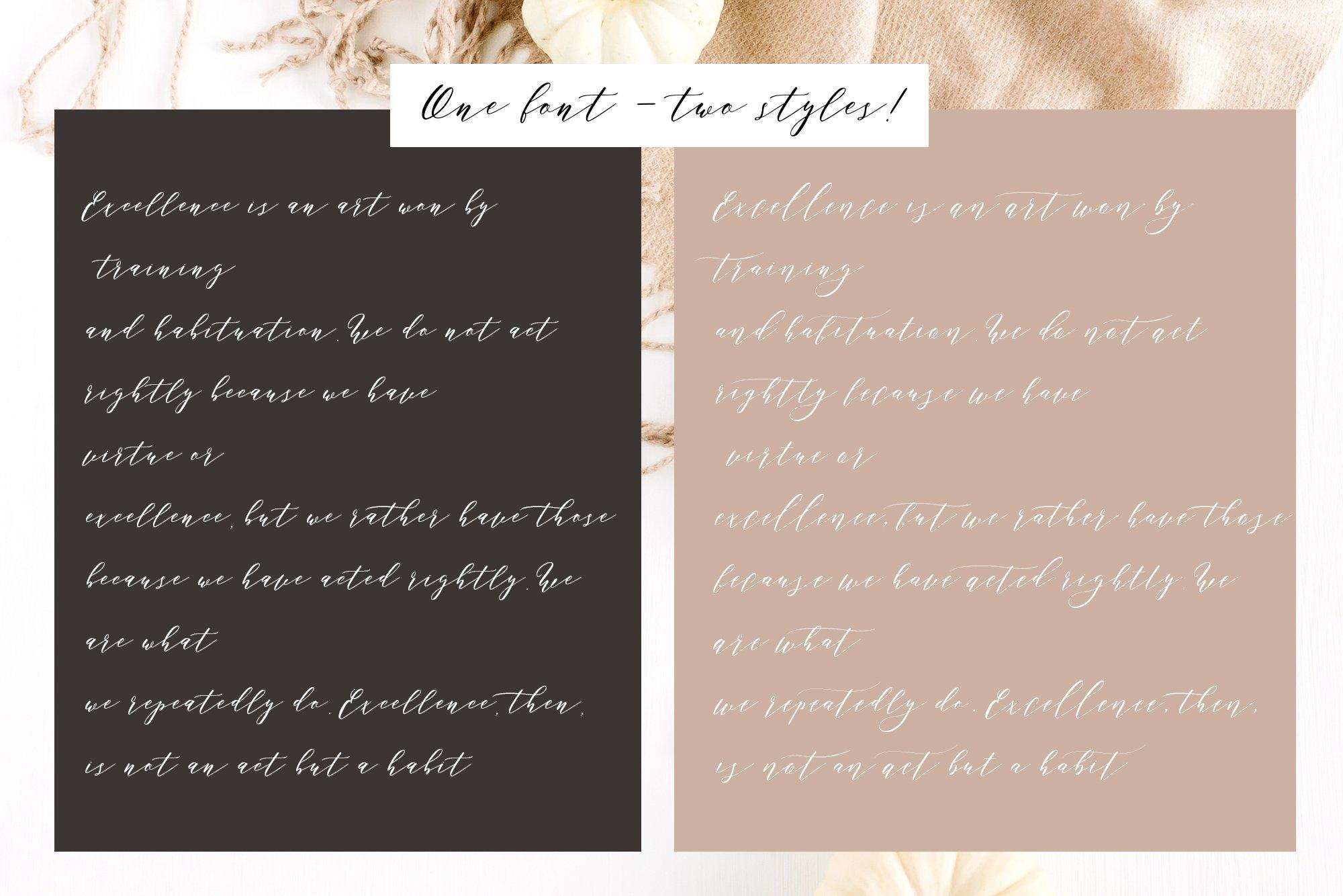 Perfect Charm - Elegant Font Script example image 3
