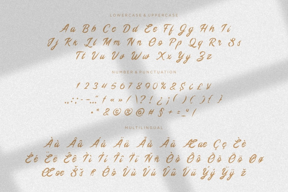 The Logos Script Font example image 4