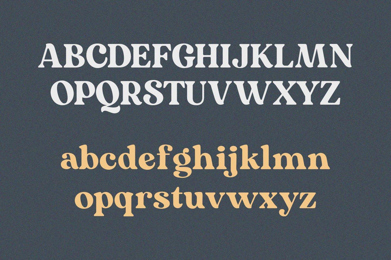 Mogena - Modern Serif Font example image 9