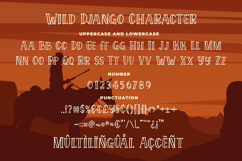 Wild Django - Bouncy Outline Serif example image 5