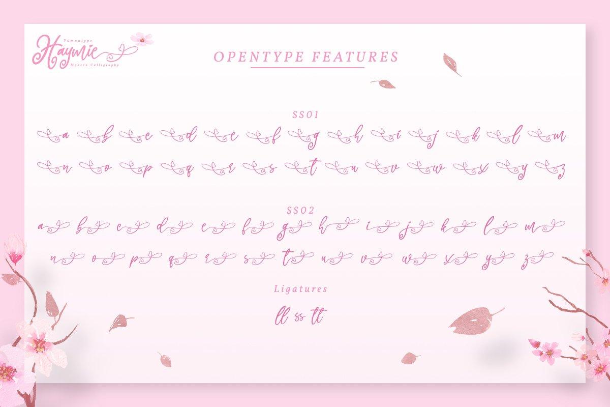Hayme Script example image 5