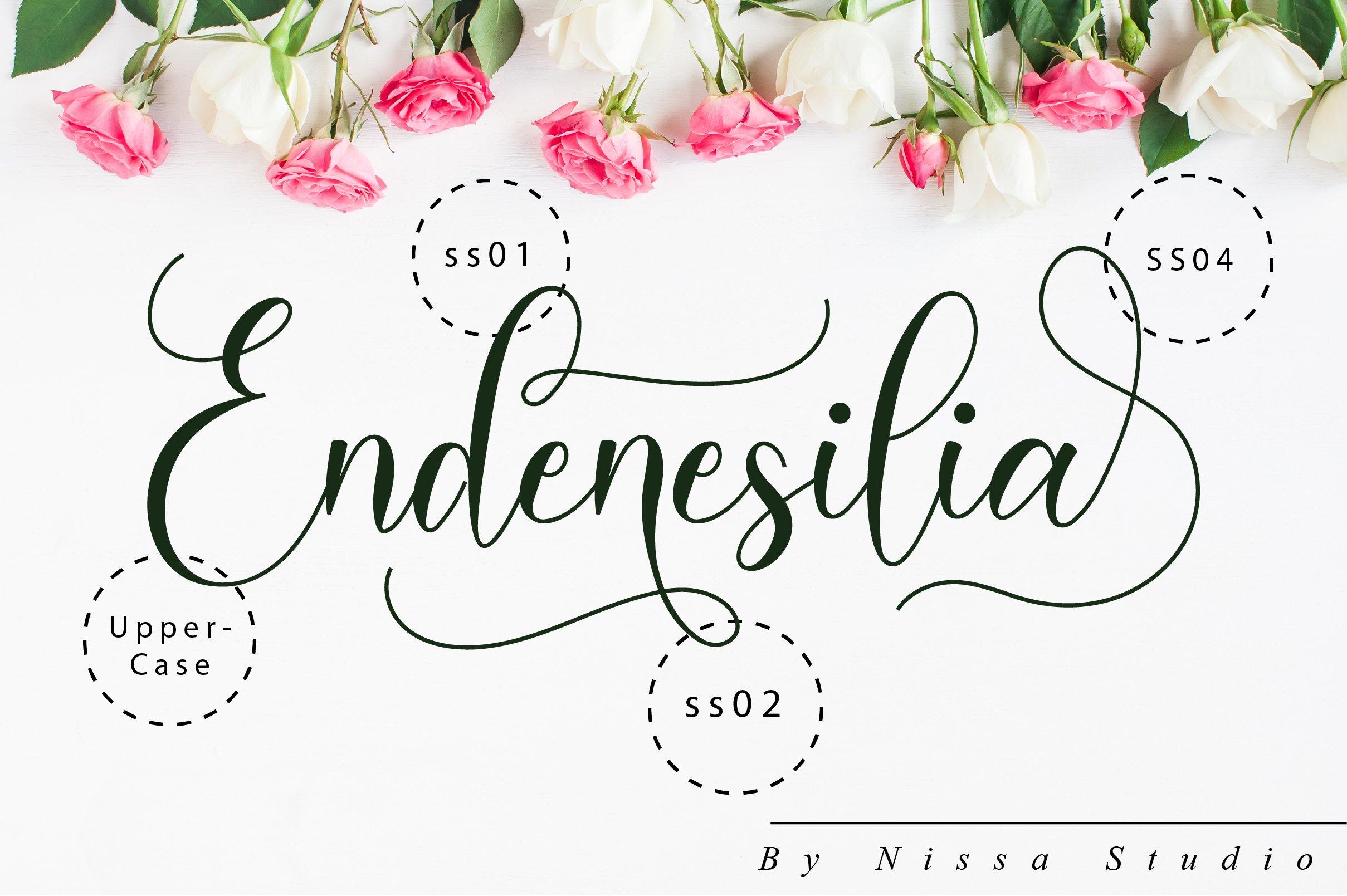 Endenesilia Script example image 10