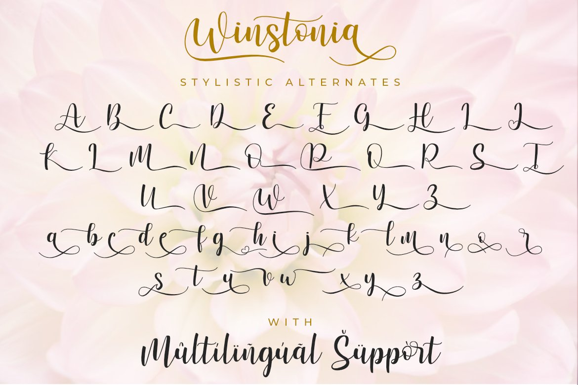 Winstonia | A Modern Calligraphy Font example image 6