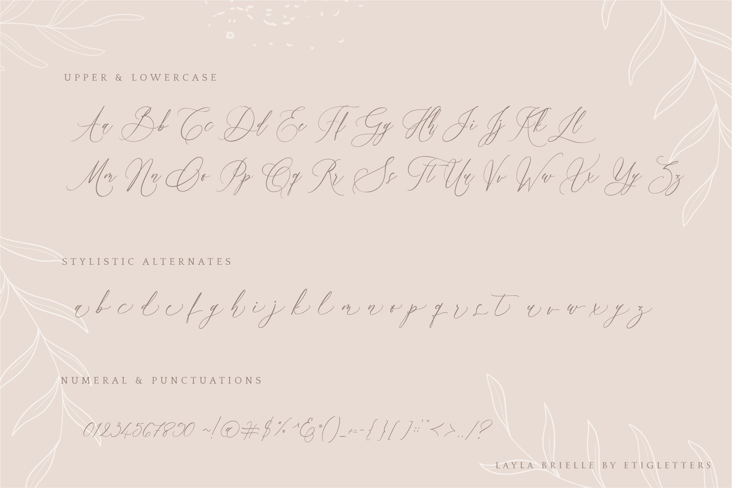 Layla Brielle Calligraphy Font example image 5