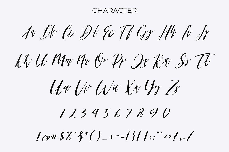 Kamild Calligraphy Font example image 6
