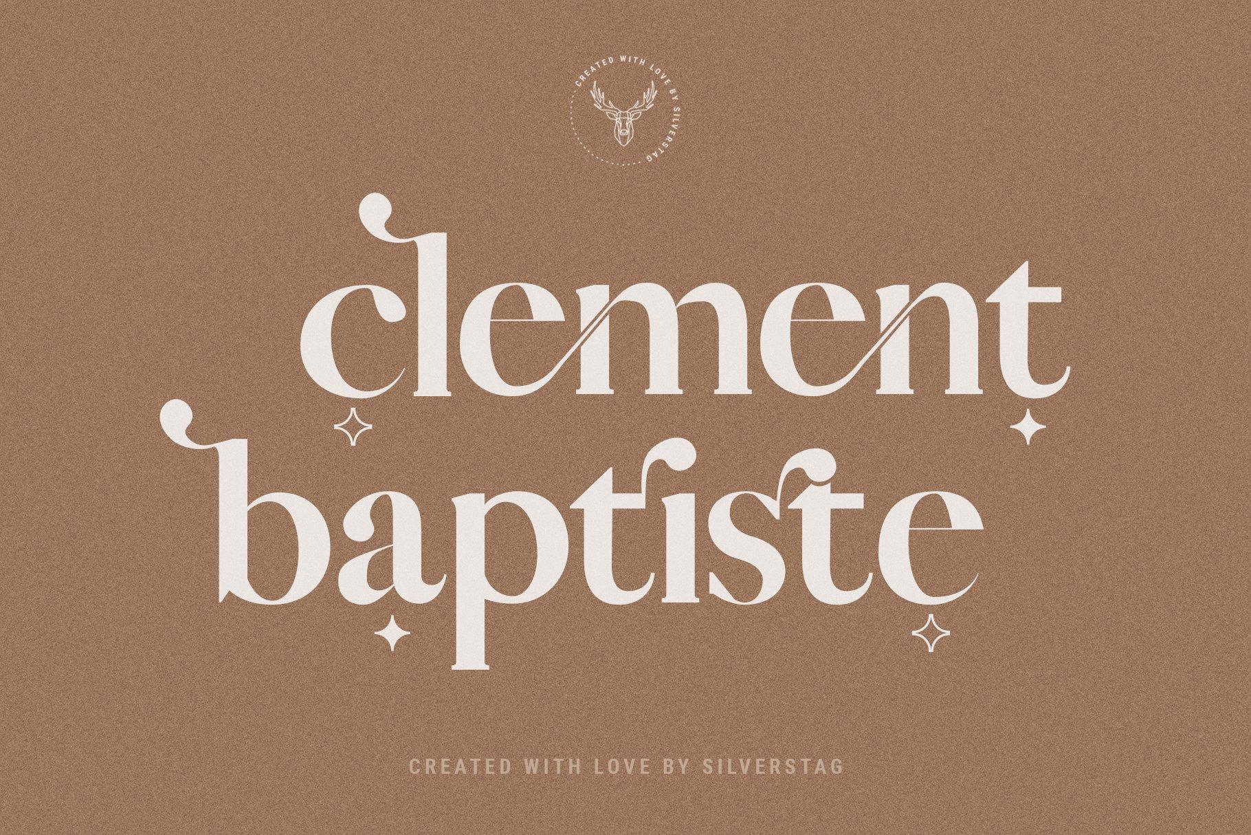 Vicky Christina - Chic & Stylish Ligature Serif Font example image 12
