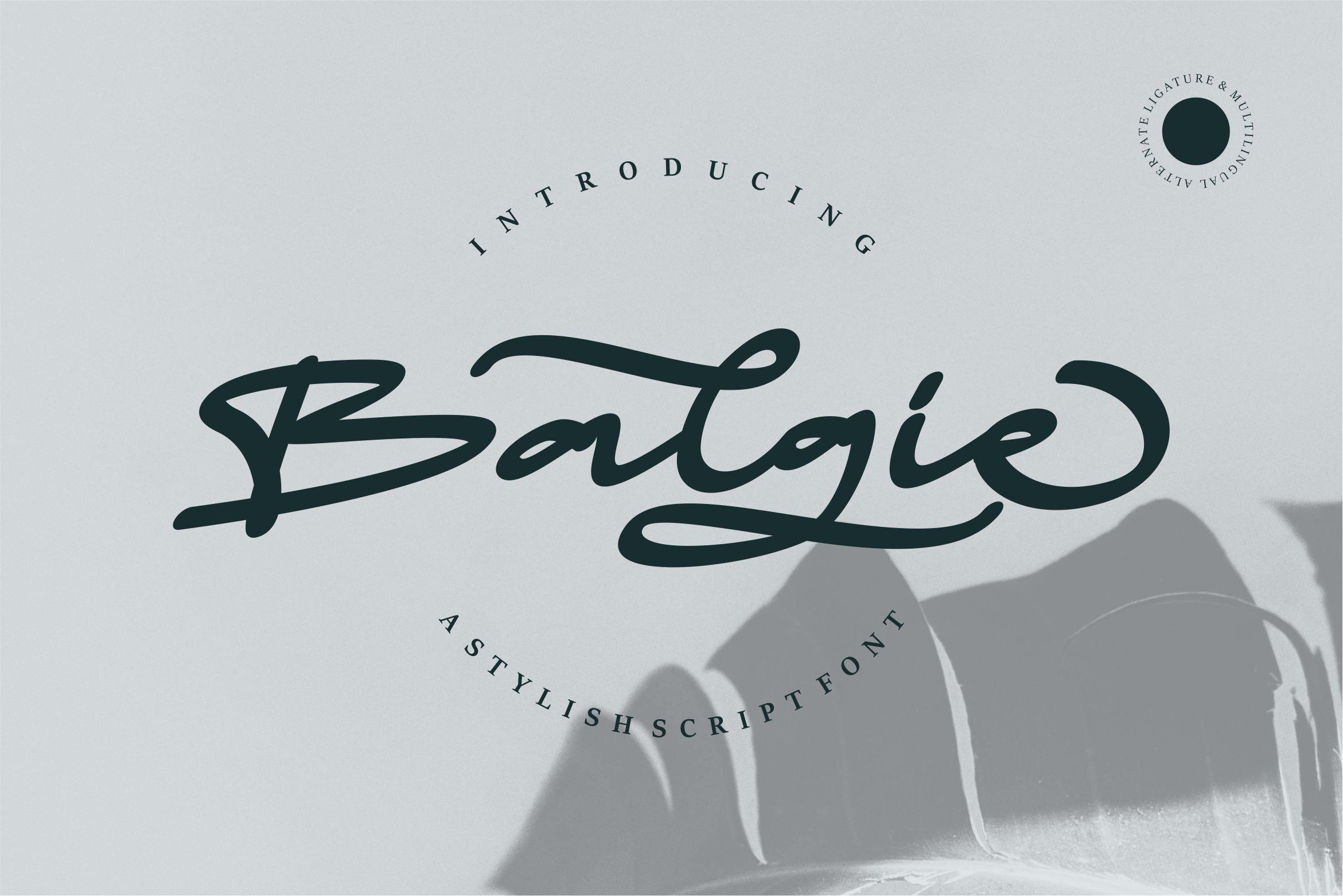 Balgie - A Stylish Script Font example image 1