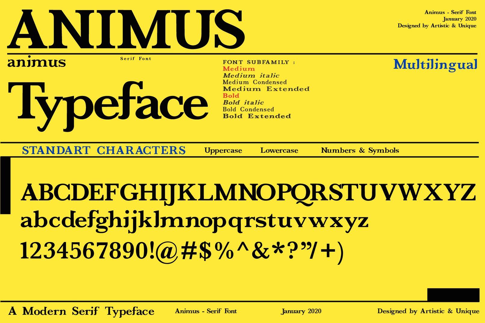 ANIMUS - Serif font family example image 4