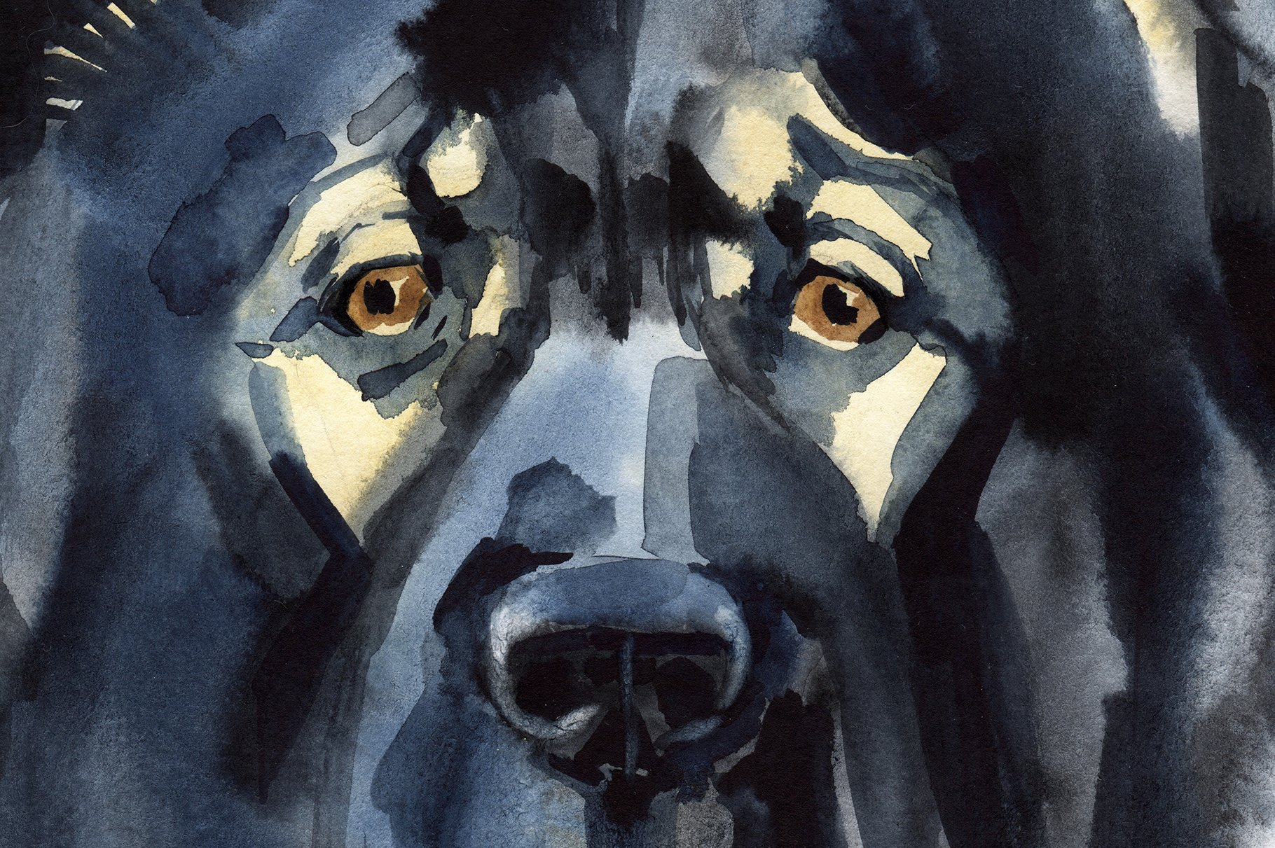 Watercolor herding dogs example image 4