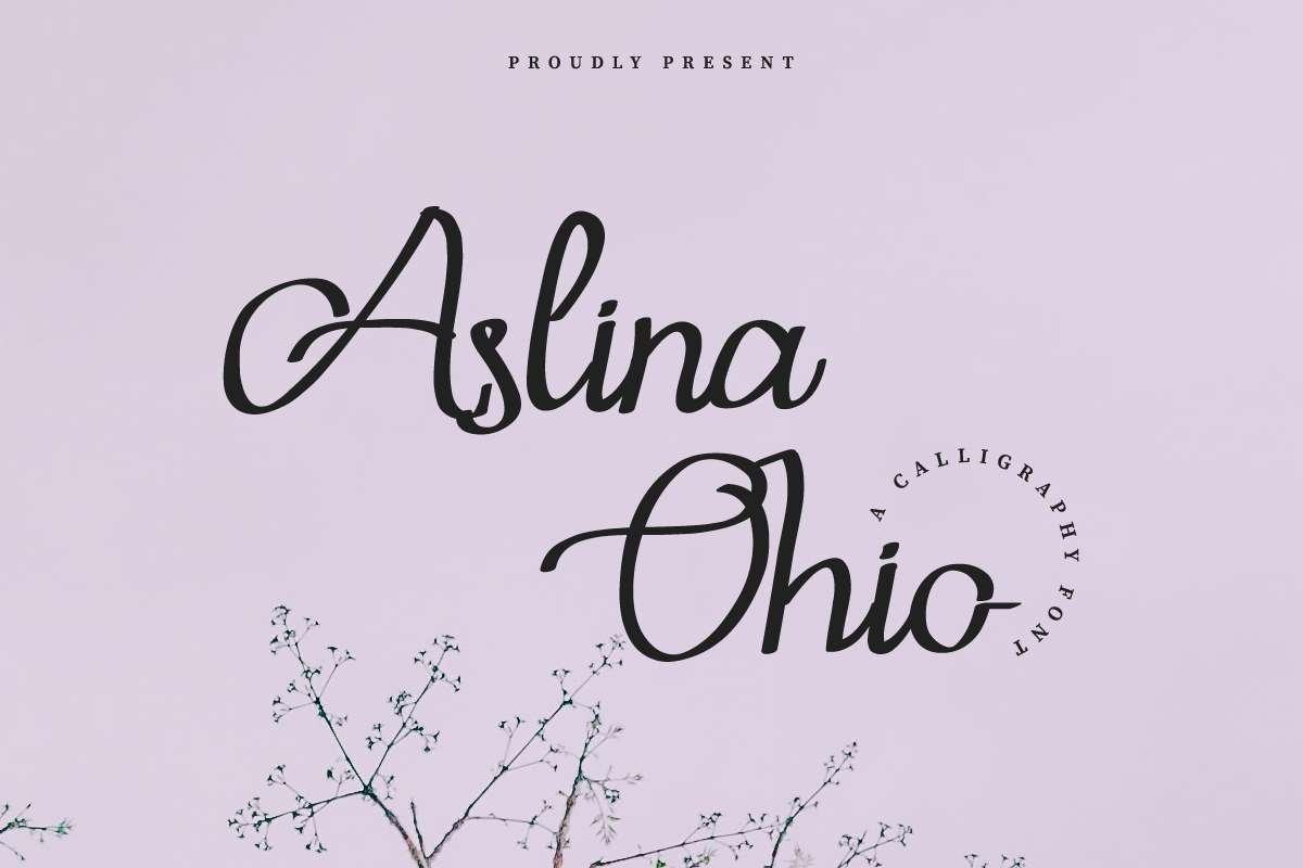 Aslina Ohio example image 12