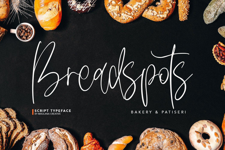 Delycious Script Restaurant Typeface example image 4