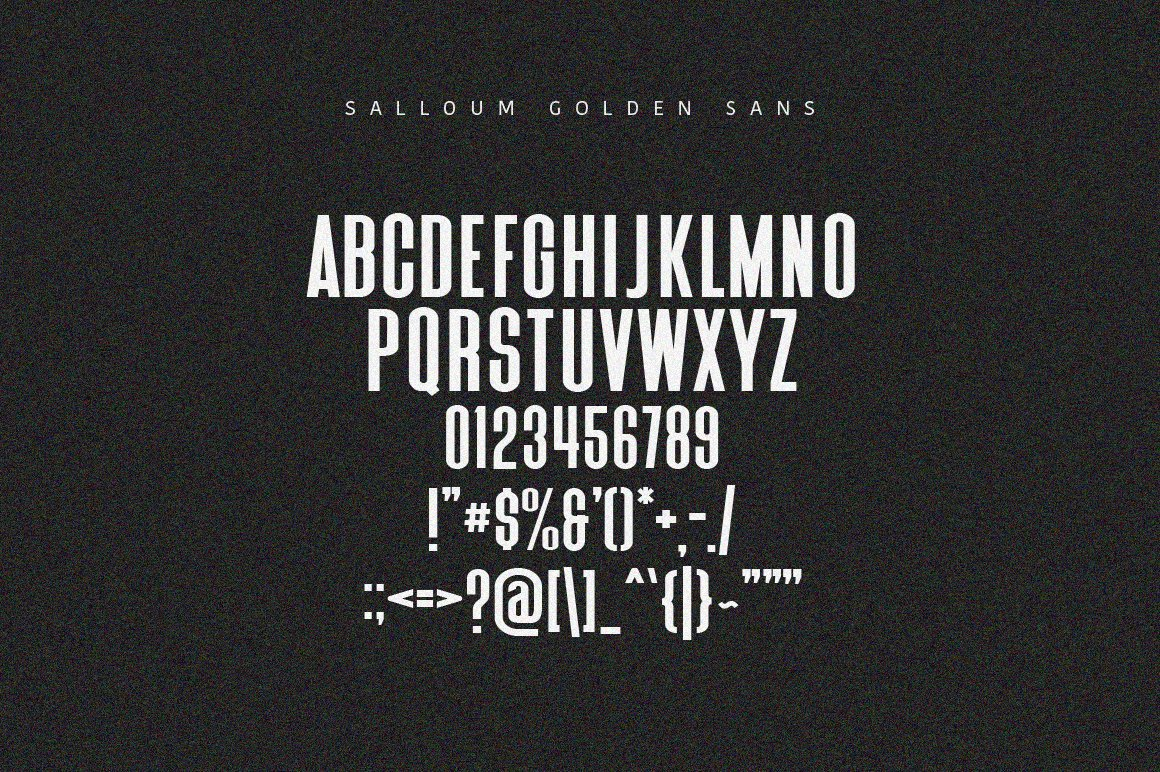 Salloum Golden Font Duo example image 7