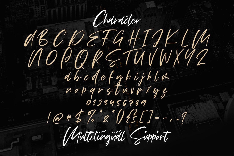 Vezthisory - Handwritten Font example image 6