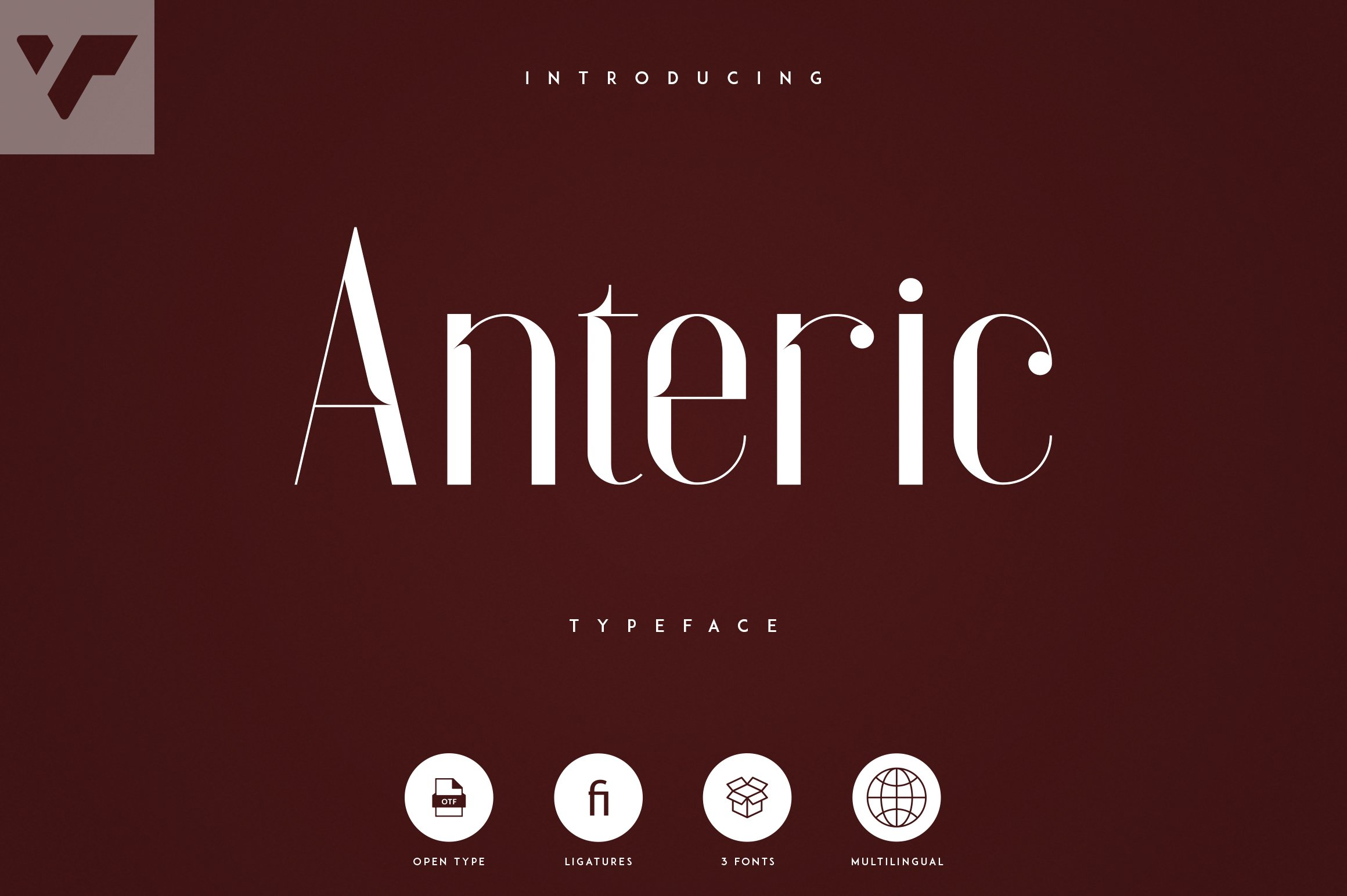 Anteric - Typeface | 3 weights example image 1