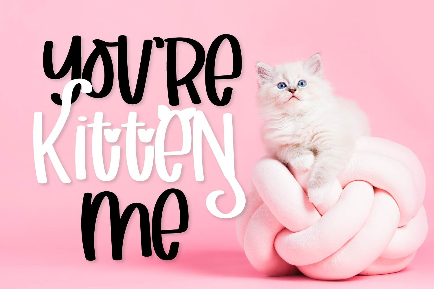 Catitude - A sassy cat font example image 2