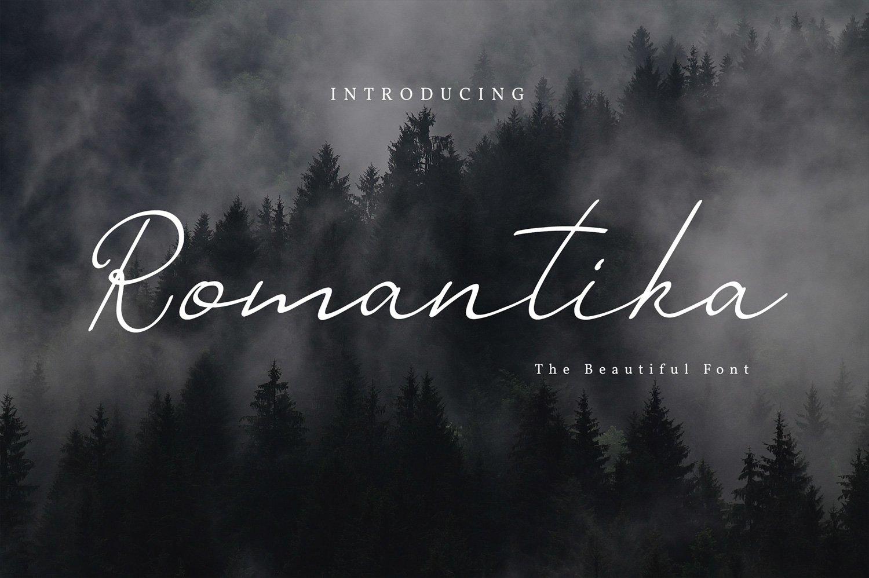 Romantika Font example image 1