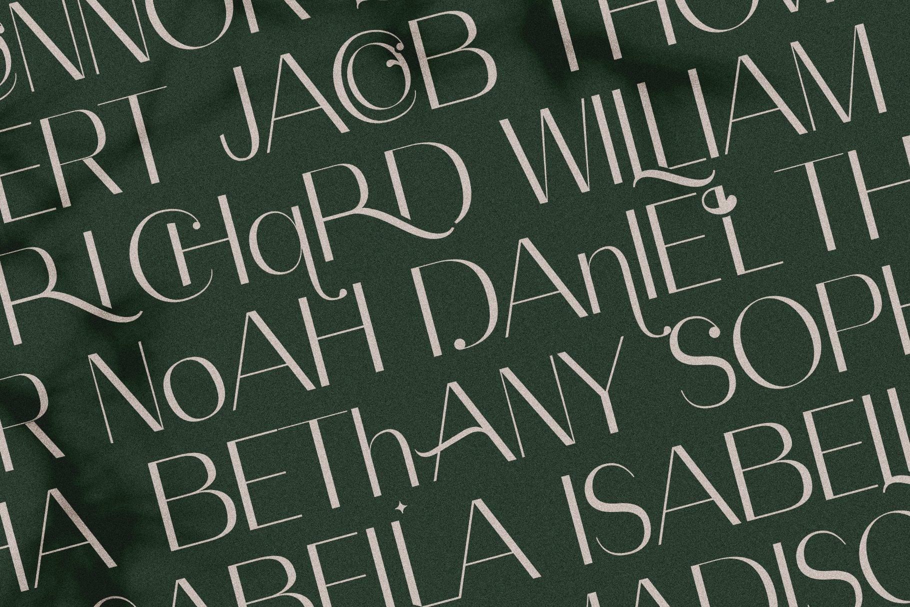 Celine - Chic Ligature Sans Font & Extras example image 12