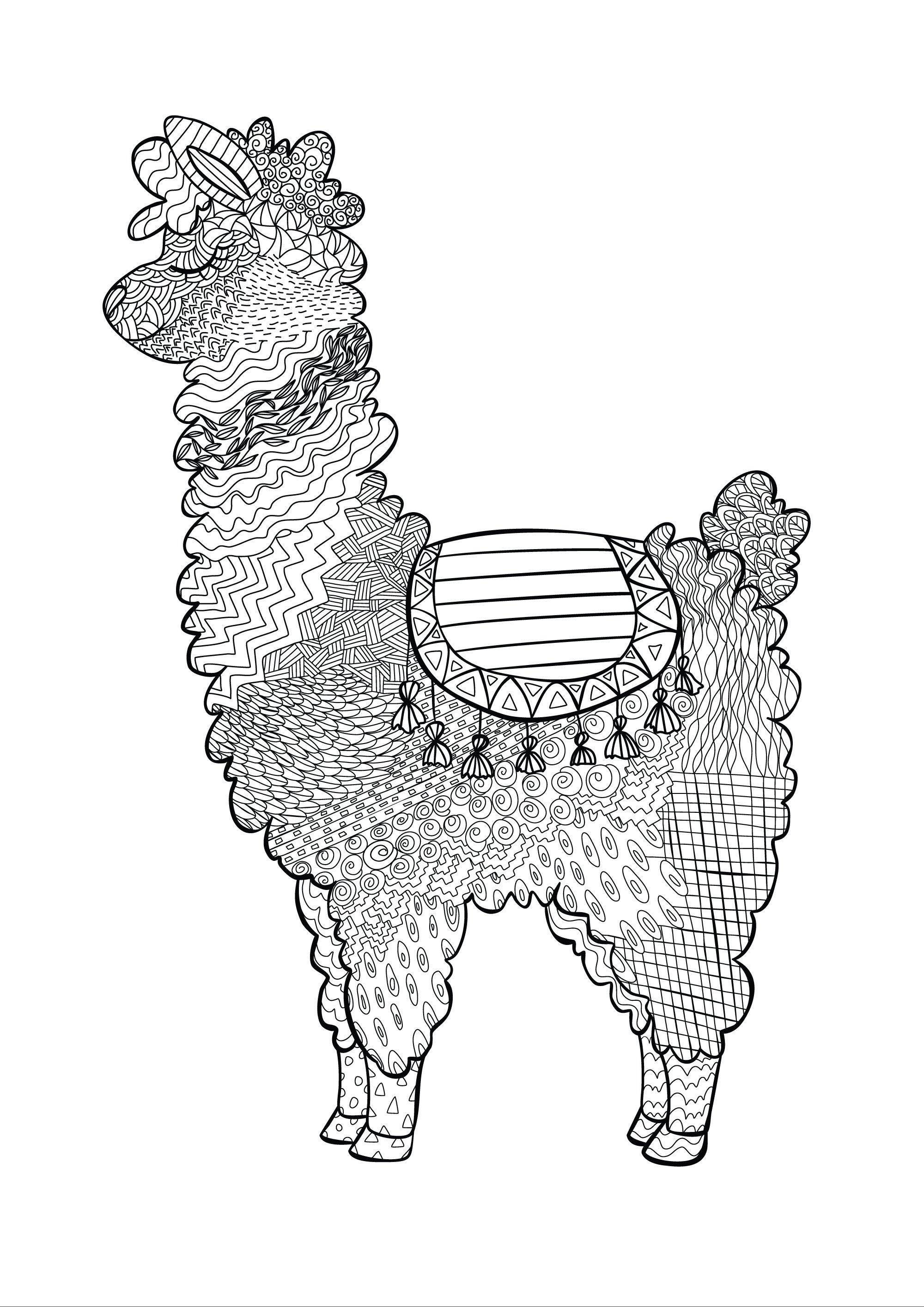 alpaca printable colouring page lama animal coloring book 687293 characters design bundles alpaca printable colouring page lama animal coloring book