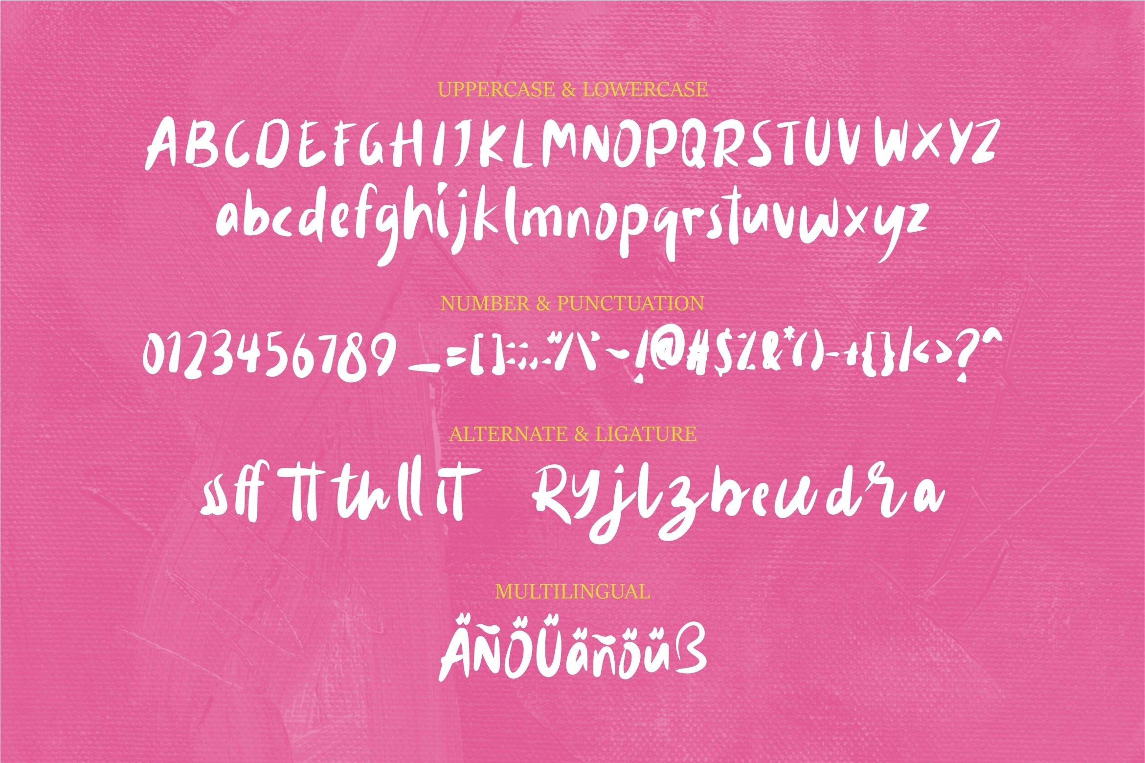 Ribollita - Brush Font example image 7