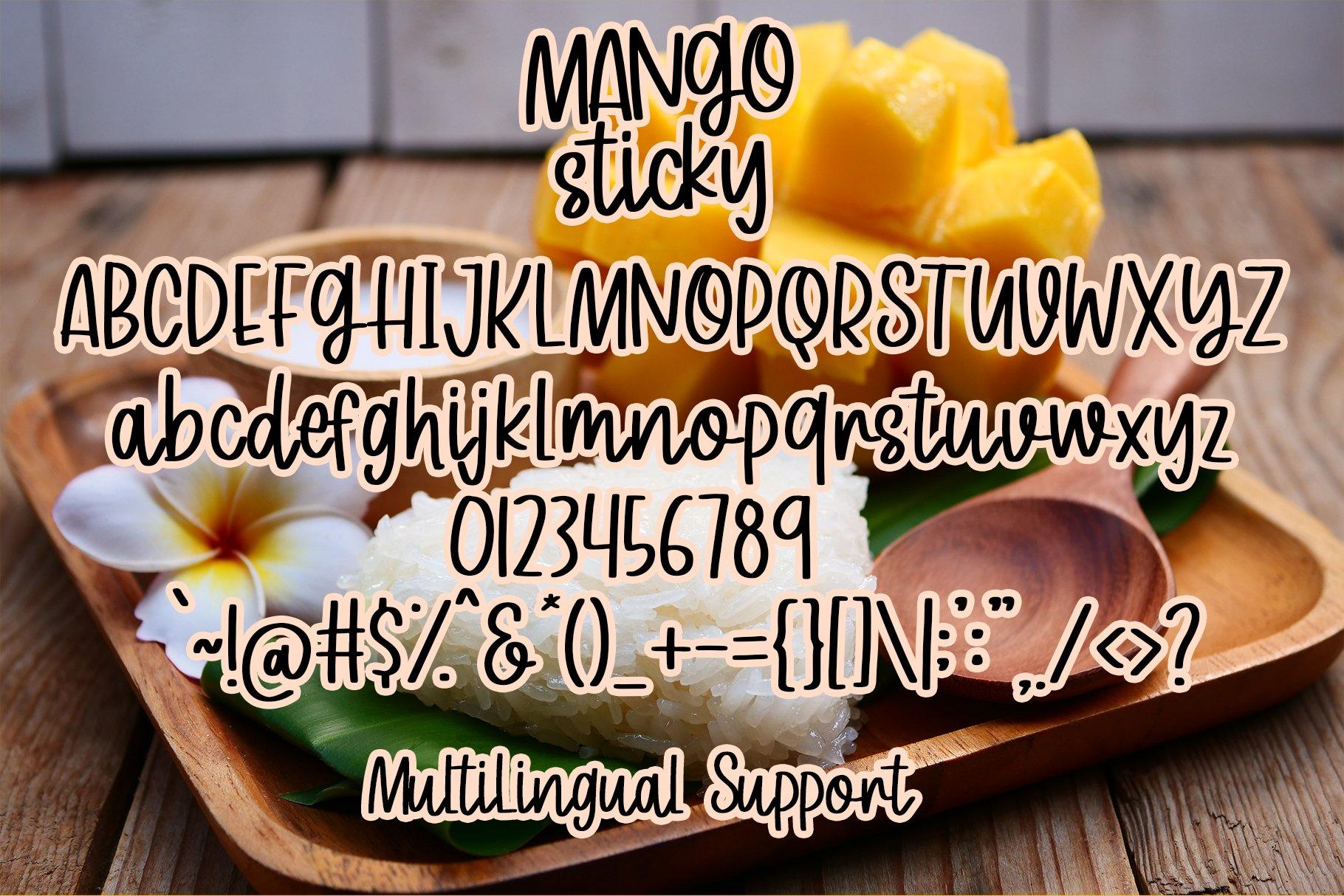 Mango Sticky - Handwritten Font example image 5
