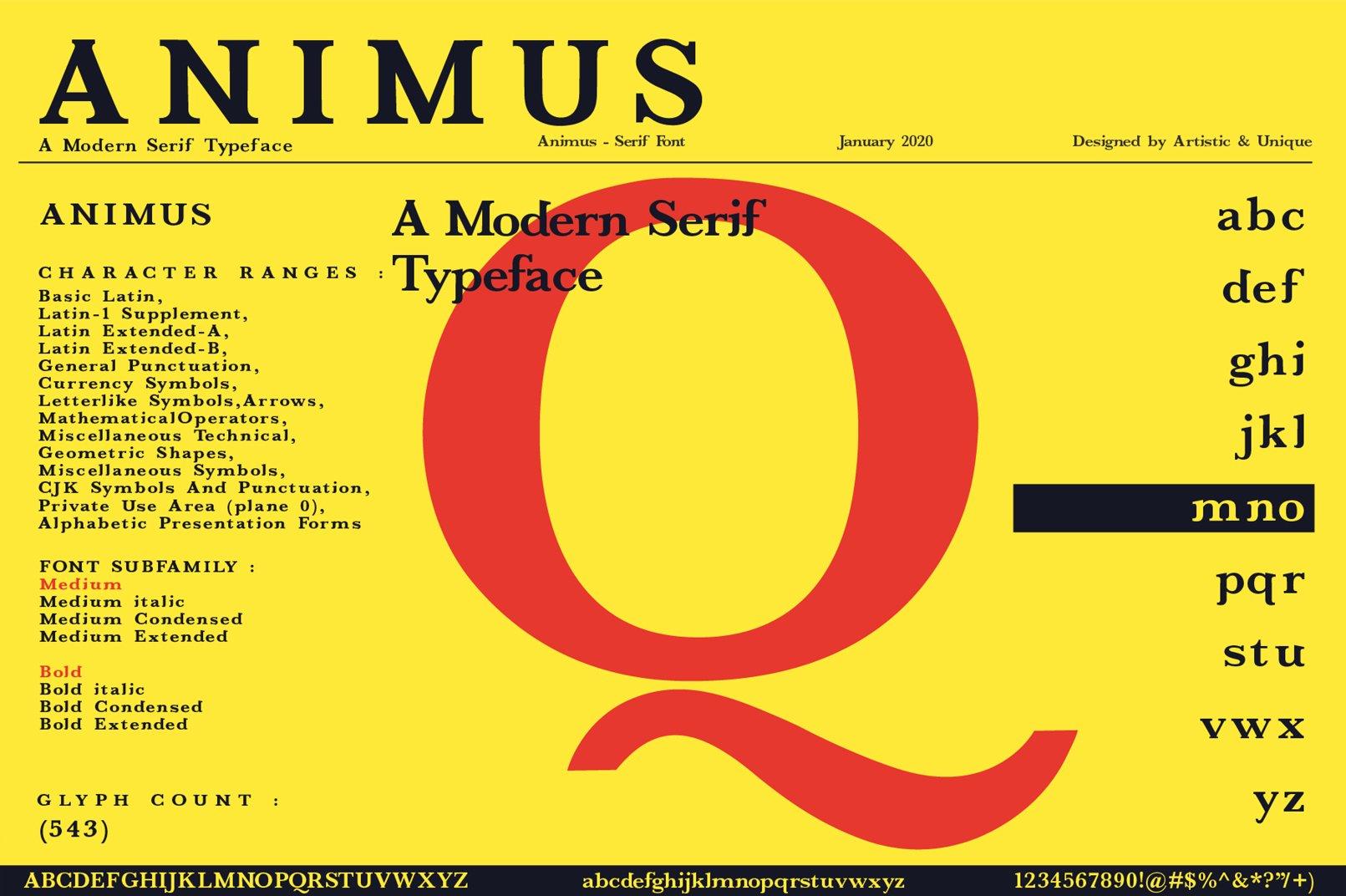ANIMUS - Serif font family example image 5