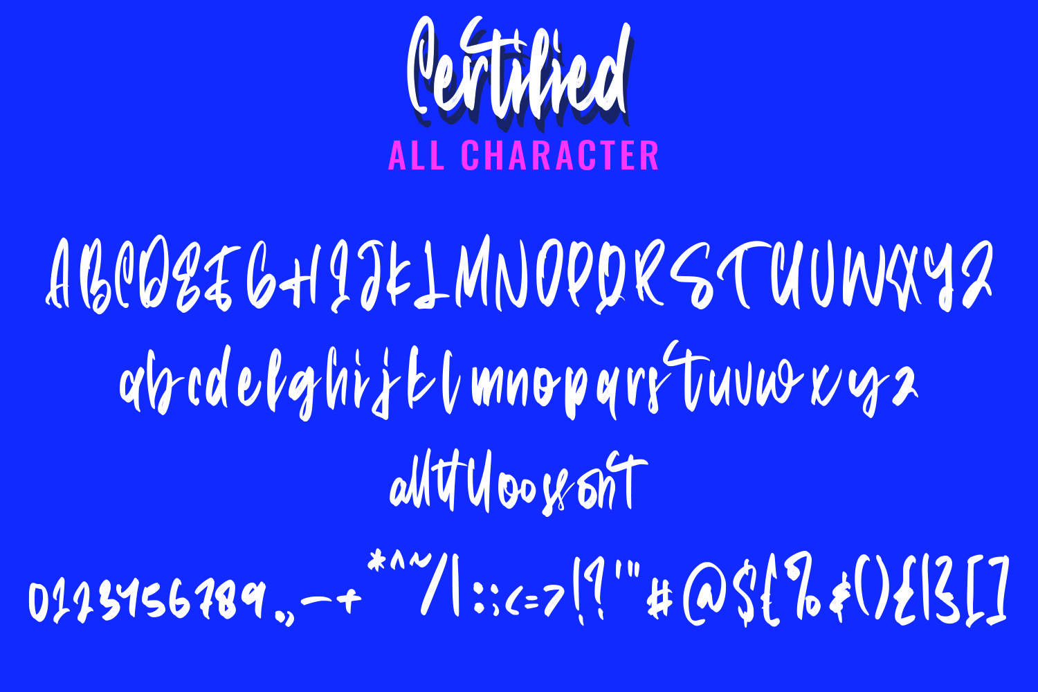 Certified - Casual Brush Script Font example image 5