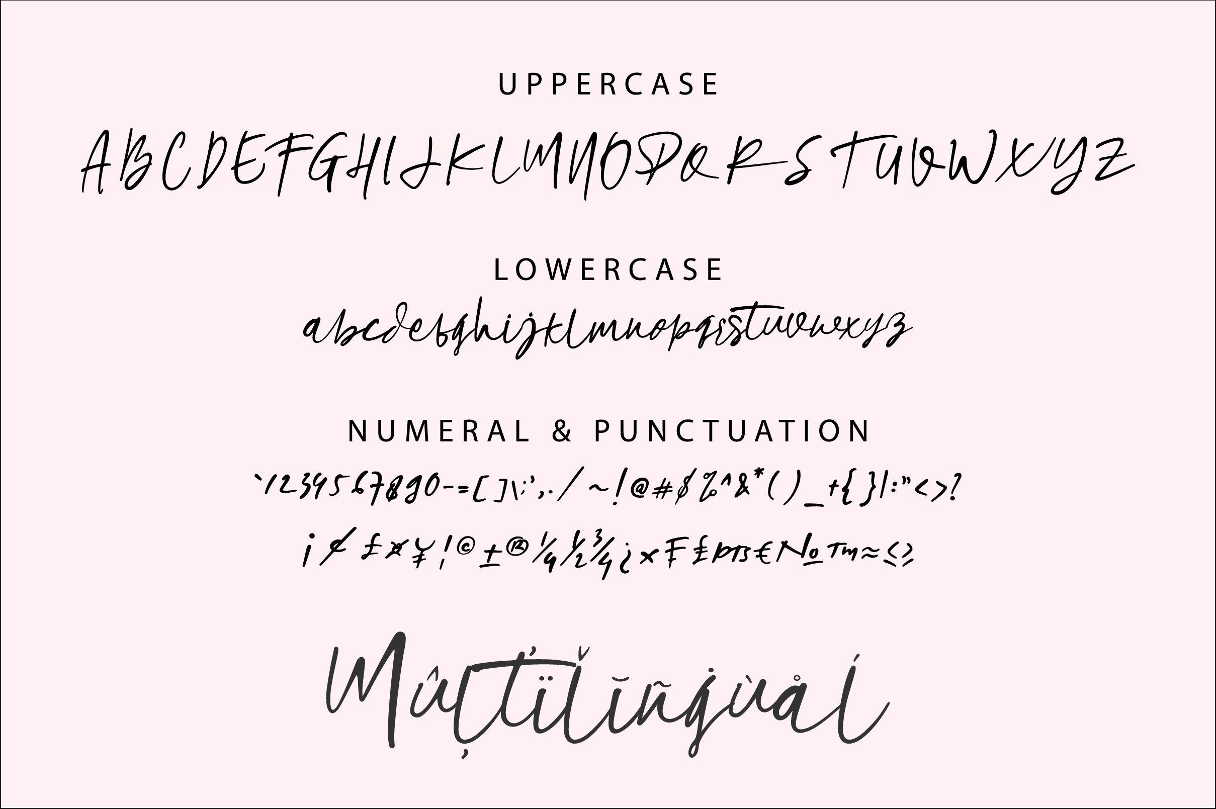 Beholde Signature Font example image 12