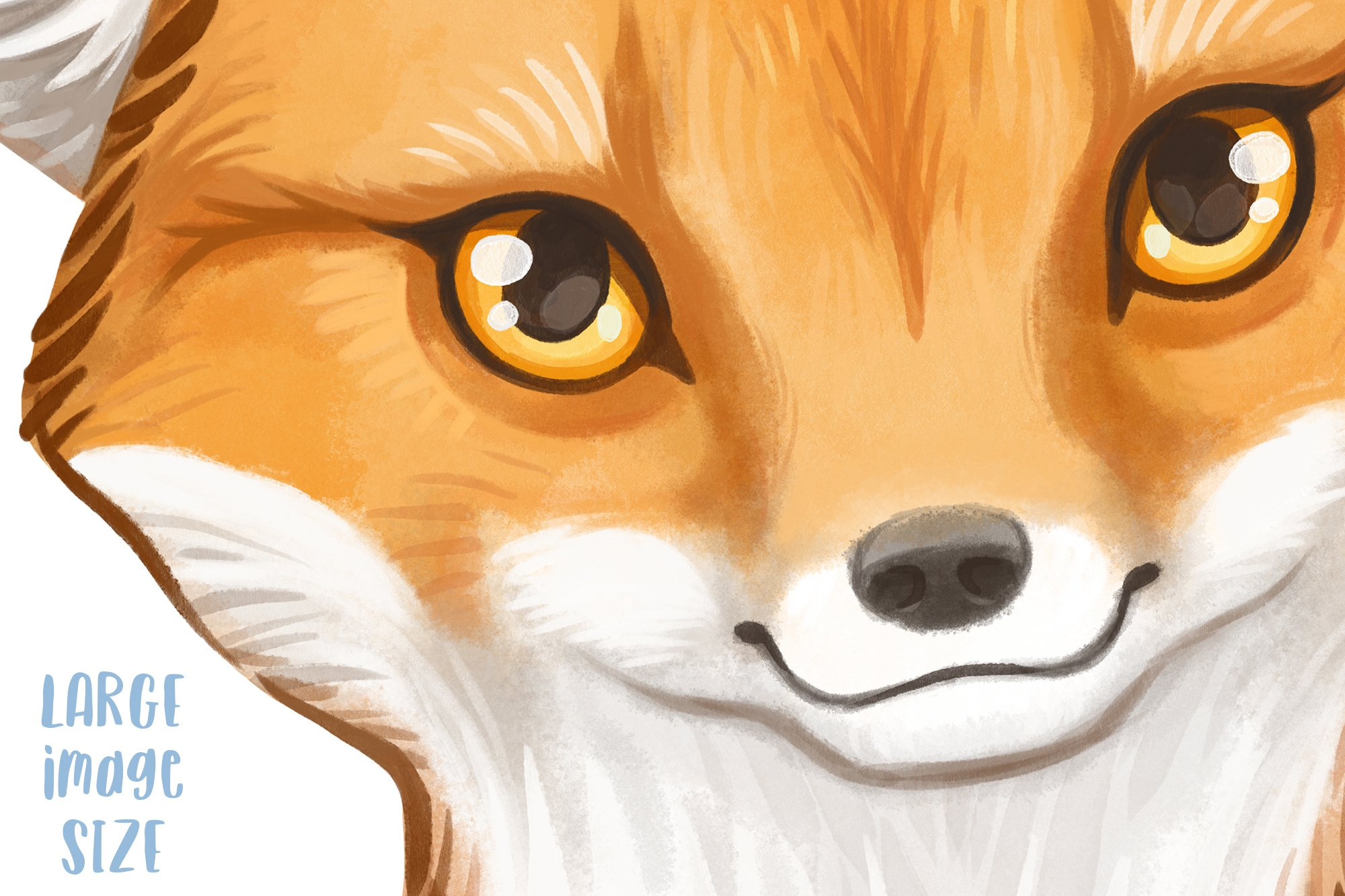 Baby fox drawing Watercolor art Forest animal clipart PNG example image 3