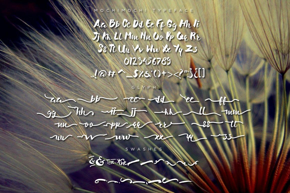 Mochimochi Typeface example image 4