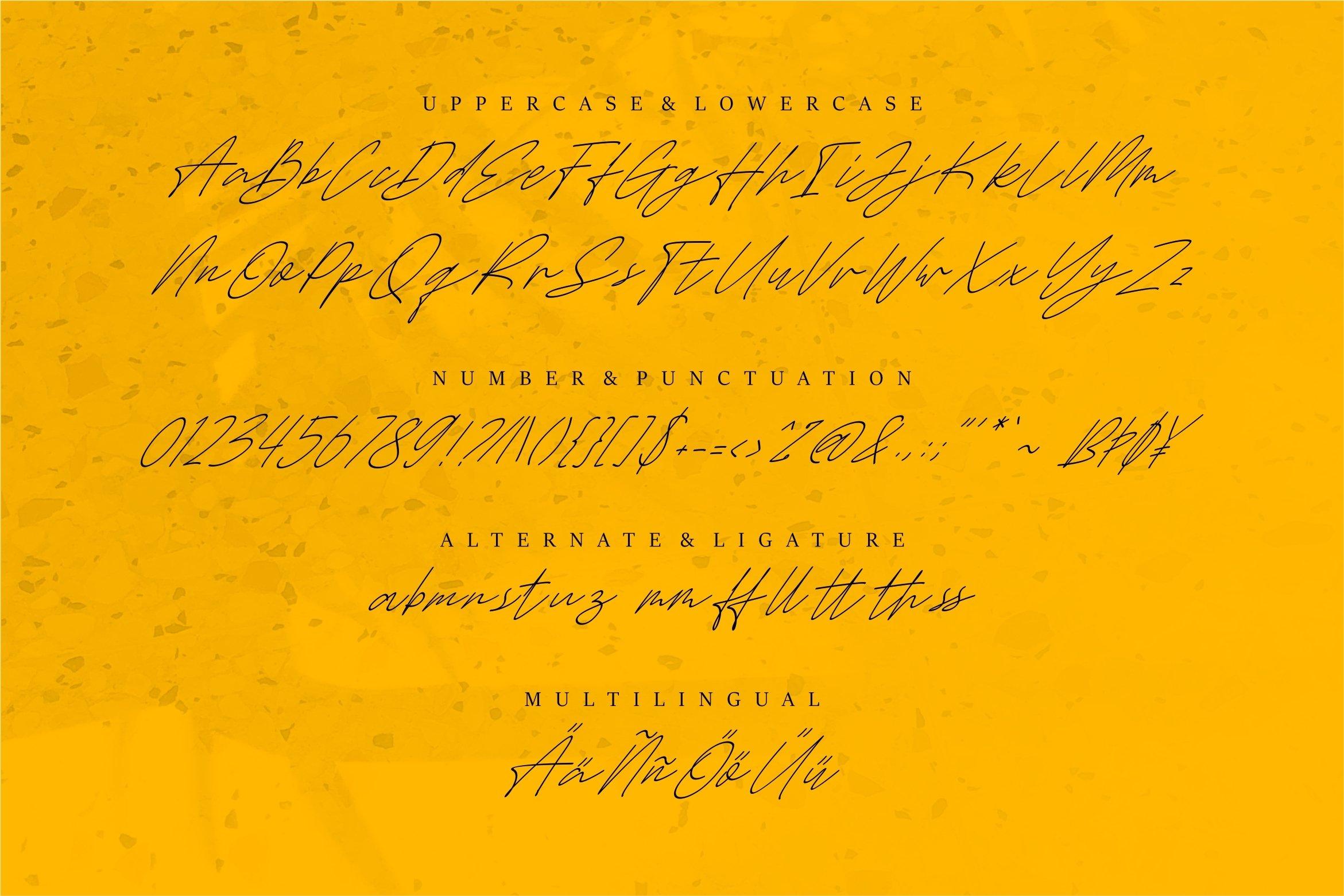 Gammeth - A Stylish Script Font example image 4