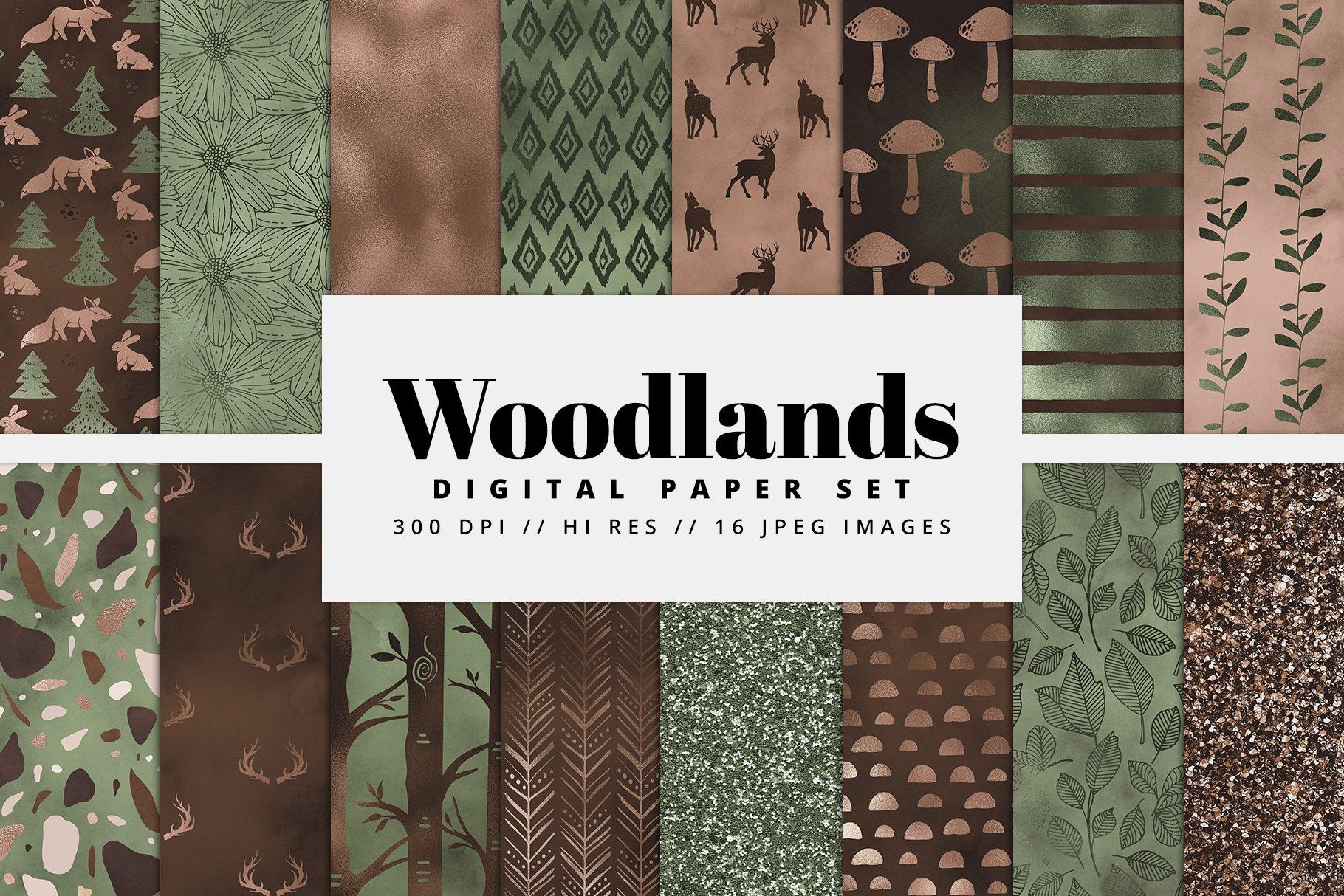 Woodlands Digital Paper Pack example image 1