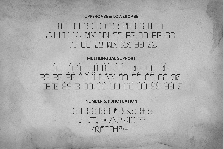 Mister Slab Font example image 5